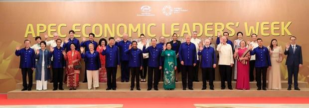 APEC 2017 : des journaux arabes tiennent en haute estime le role du Vietnam hinh anh 1