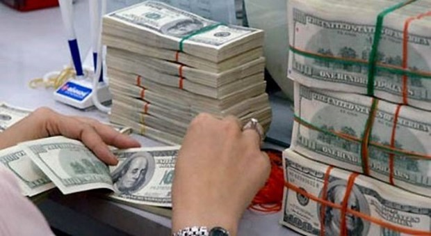 10 mois: 3,9 milliards de dollars de devises transferees a Ho Chi Minh-Ville hinh anh 2