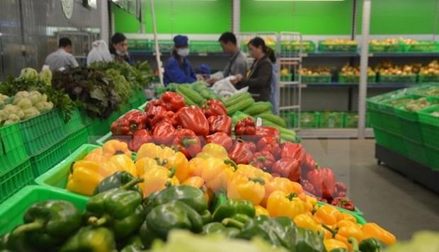 Plus de 33 milliards d'USD d'exportations de produits agricole, sylvicole et aquatique hinh anh 1
