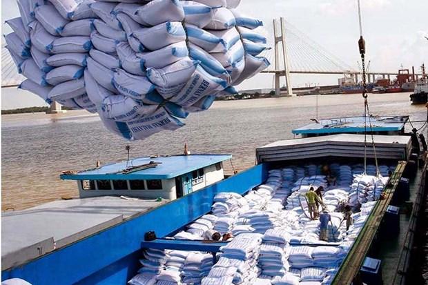 Elever la position du riz vietnamien a l'international hinh anh 1