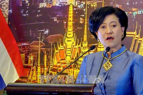 Celebration du 90e anniversaire de la Fete nationale de Thailande a Ho Chi Minh-Ville hinh anh 1