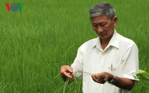 Tran Cong Len: quand le bonheur de l'un fait le bonheur des autres hinh anh 1