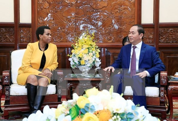 Promotion de la cooperation integrale Vietnam - Afrique du Sud hinh anh 1