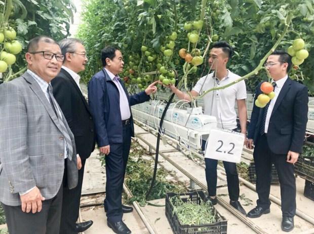 Le Vietnam et l'Australie renforcent leur cooperation dans l'education hinh anh 2