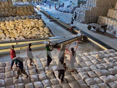 Le Vietnam pourrait exporter 6 millions de tonnes de riz en 2017 hinh anh 1