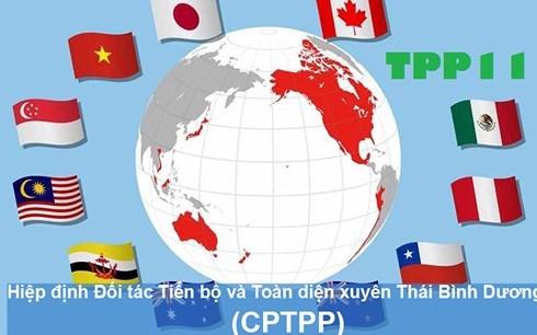 Pour profiter pleinement des retombees du CPTTP hinh anh 1