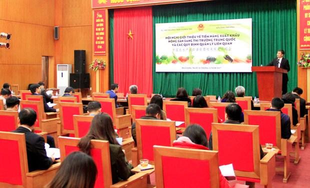 Potentiels d'exportation des produits agricoles, sylvicoles et aquacoles vers la Chine hinh anh 1