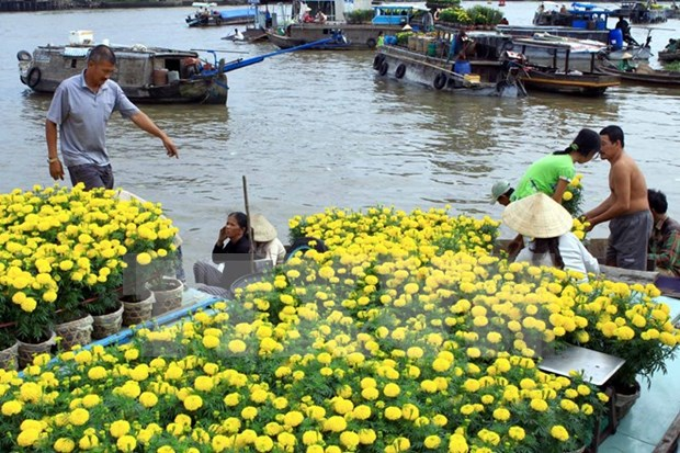 Tet 2018 : fetes des fleurs a Ho Chi Minh-Ville hinh anh 1