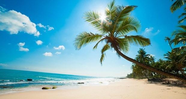 Phu Quoc accueille plus de 8.300 touristes etrangers hinh anh 1