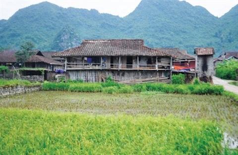 Dans les hameaux Tay de Bac Son hinh anh 2