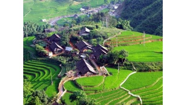 La vogue du tourisme « homestay » a Sa Pa hinh anh 1