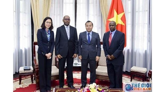 Vietnam et Zambie : des passerelles reliant l'ASEAN et la CDAA hinh anh 1