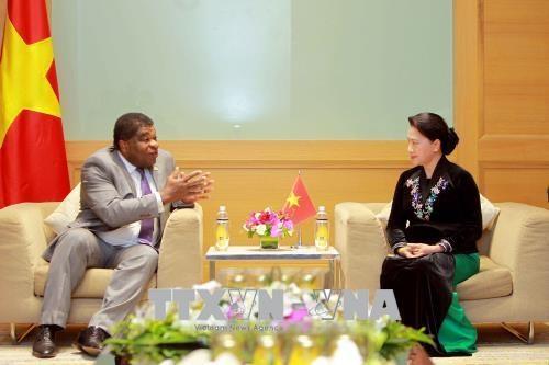 La presidente de l'AN vietnamienne recoit un dirigeant de l'UIP hinh anh 1