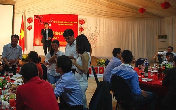 Les Vietnamiens en Indonesie et au Mozambique celebrent le Tet du Chien 2018 hinh anh 1