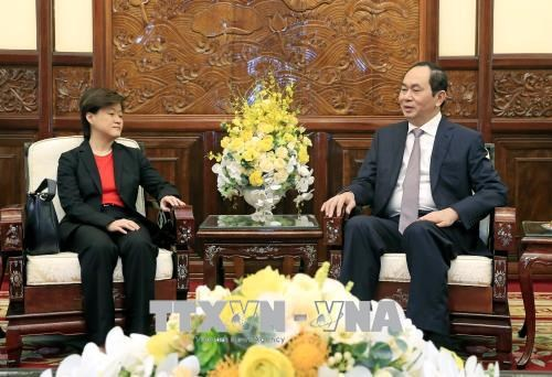 Le president Tran Dai Quang recoit l'ambassadrice de Singapour au Vietnam hinh anh 1