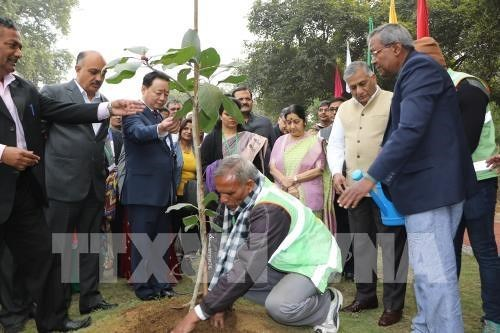 Inauguration du parc de l'amitie Inde-ASEAN a New Delhi hinh anh 1