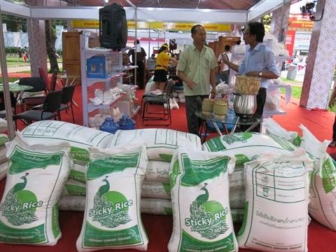 Semaine commerciale du Laos a Ho Chi Minh-Ville hinh anh 1