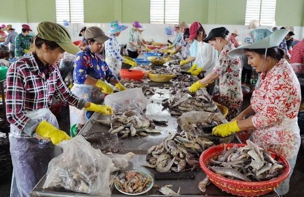 Le Canada continue de soutenir le developpement des PME a Tra Vinh hinh anh 1