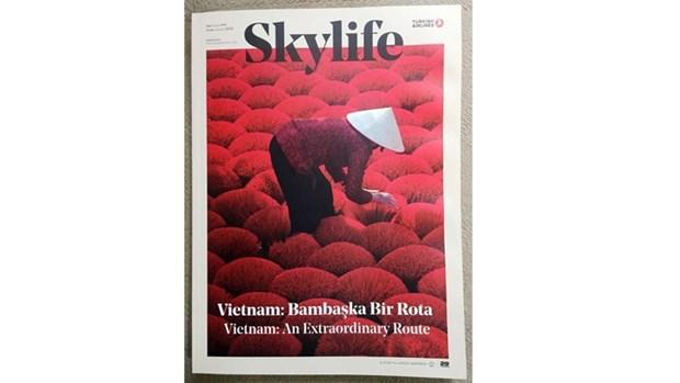 Turkish Airlines promeut le tourisme vietnamien dans son magazine hinh anh 1
