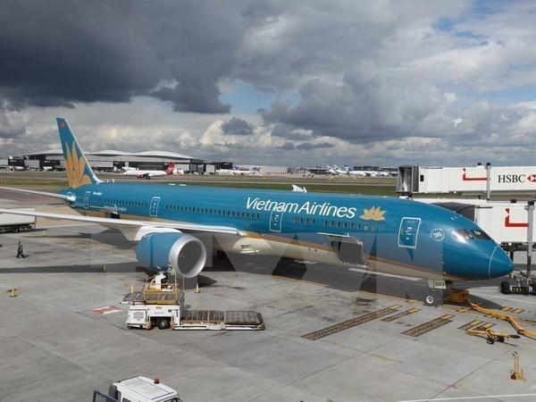 Les compagnies aeriennes du Vietnam transportent environ 3,7 millions de touristes en janvier hinh anh 1