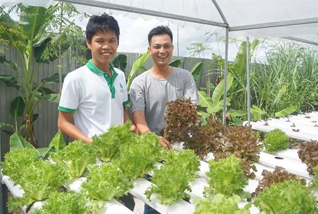 L'agriculture intelligente, une tendance dans le delta du Mekong hinh anh 1