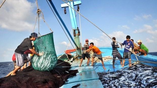 Bon signe pour les exportations de produits aquatiques en janvier hinh anh 1