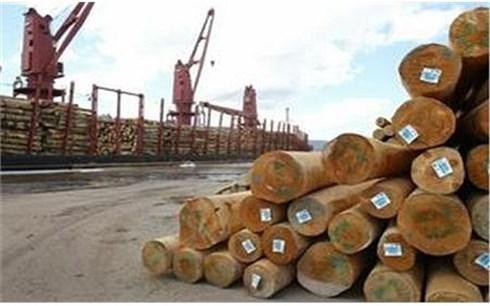 Doper les exportations du bois en 2018 hinh anh 1
