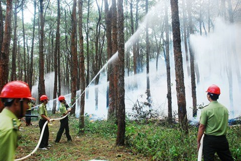 Dak Nong met l'accent sur la prevention des incendies a la saison seche hinh anh 1