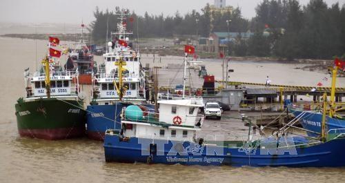 Le Japon offre des lampes a LED aux bateaux de peche de Quang Tri hinh anh 1