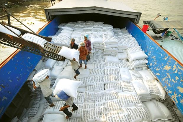 Bon debut d'annee pour les exportations nationales de riz hinh anh 1