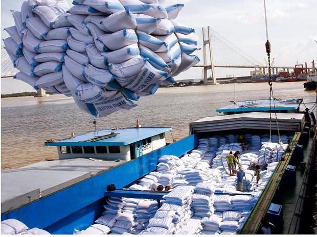 Les Etats-Unis optimiste quant aux exportations vietnamiennes de riz hinh anh 1