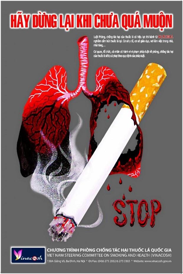 Le Vietnam, laureat un Prix Bloomberg Philanthropies pour la reduction du tabagisme hinh anh 1