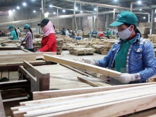 L'industrie du bois du Vietnam devant les opportunites d'expansion des exportations hinh anh 1
