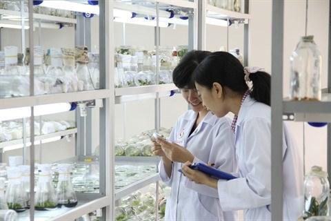 Ho Chi Minh-Ville : de nombreuses politiques en faveur des experts et scientifiques hinh anh 1