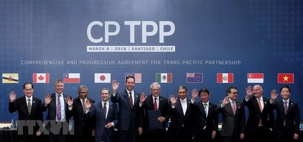 Le CPTPP face a des defis et opportunites hinh anh 1