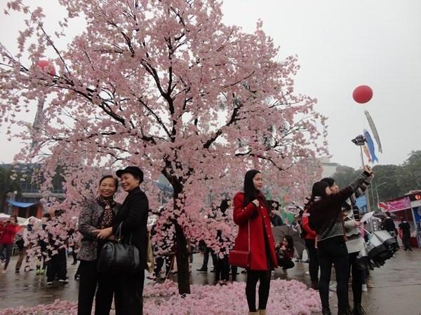 Une riche palette d'activites a la Fete d'echanges culturels Vietnam-Japon hinh anh 2