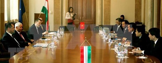 Activites de la delegation de la Cour populaire supreme du Vietnam en Hongrie hinh anh 1