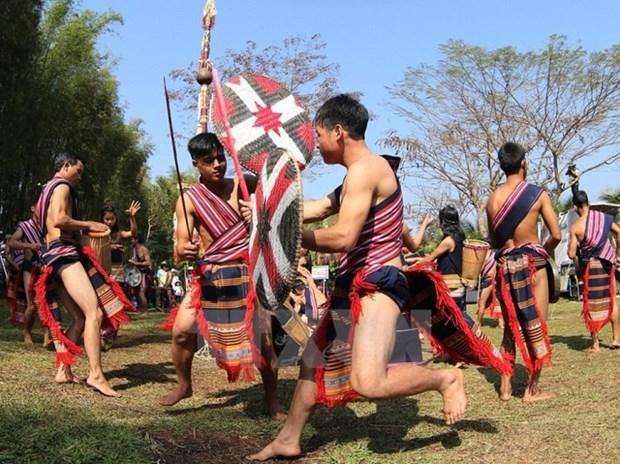 Le joyeux mois de mars sur les hauts plateaux du Tay Nguyen hinh anh 2