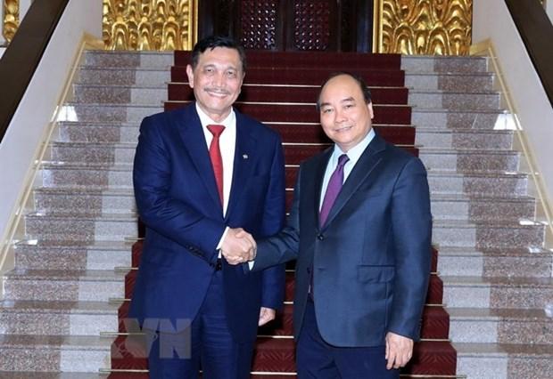 Le PM Nguyen Xuan Phuc recoit le ministre coordinateur des affaires maritimes de l'Indonesie hinh anh 1