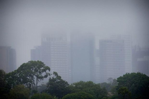 Hanoi: formation regionale de l'OMM a propos des services meteorologiques publics hinh anh 1