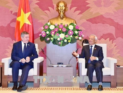 Le Vietnam et la Roumanie boostent la cooperation parlementaire hinh anh 1
