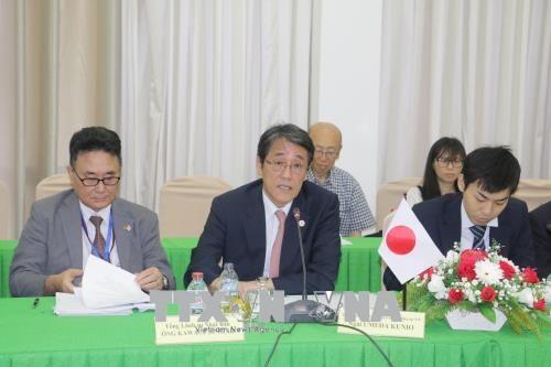 Can Tho souhaite attirer plus d'investissements japonais hinh anh 1