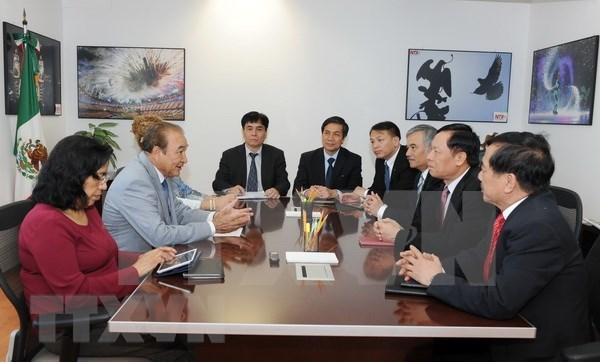 Le Vietnam et le Mexique partagent les experiences en matiere d'information pour l'etranger hinh anh 1