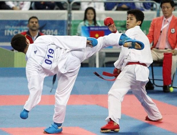 Ouverture du 7e Championnat de karate d'Asie du Sud-Est a Bac Ninh hinh anh 1