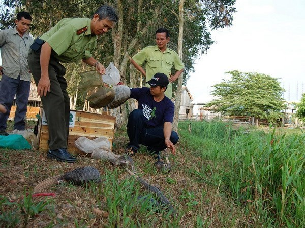 Des mesures pour preserver la biodiversite du parc national d'U Minh Thuong hinh anh 1