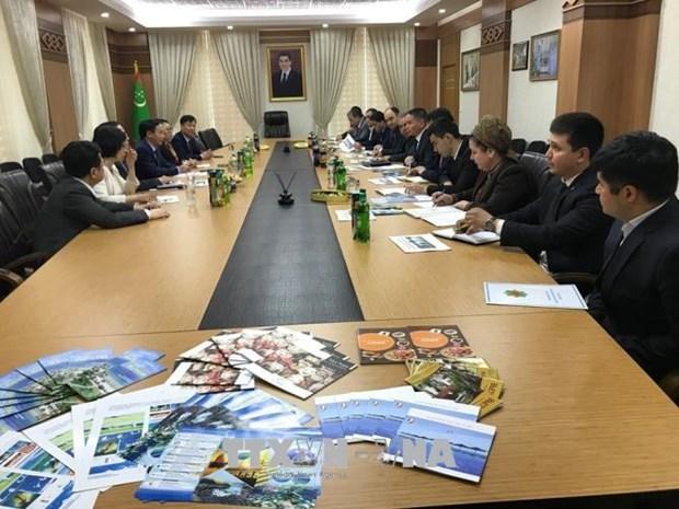 Dynamiser la cooperation Vietnam - Turkmenistan hinh anh 2