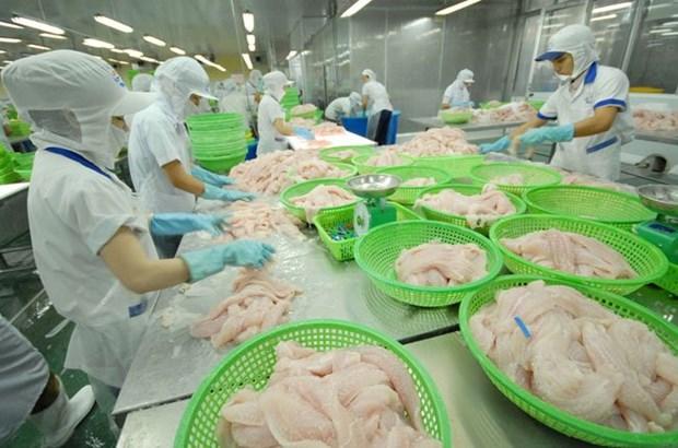 An Giang : plus de 276 millions de dollars des exportations de riz et de pangasius hinh anh 1