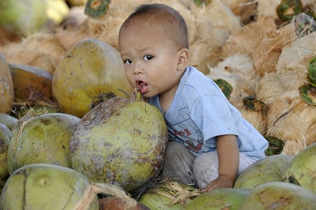 Le Vietnam dans l'objectif d'un artiste photographe suisse hinh anh 2