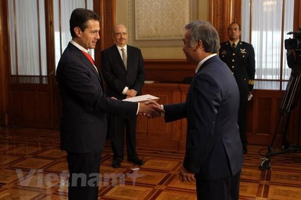 Le president mexicain s'engage a resserrer les liens avec le Vietnam hinh anh 1