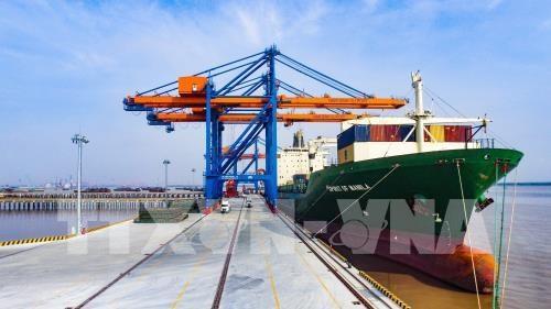 Mise en service du port en eau profonde de Nam Dinh Vu a Hai Phong hinh anh 1